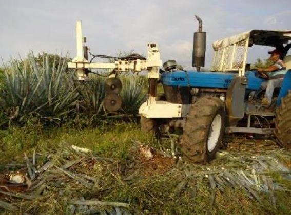 Máquina podadora de agave de Casa Sauza