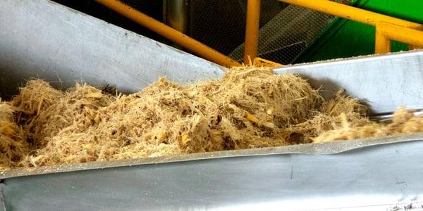 fibra.fibra de agave