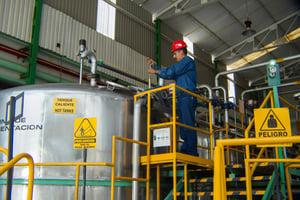fermentacion casa sauza