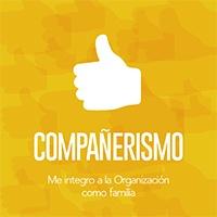 COMPAÑERISMO.jpg
