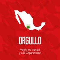 ORGULLO.jpg