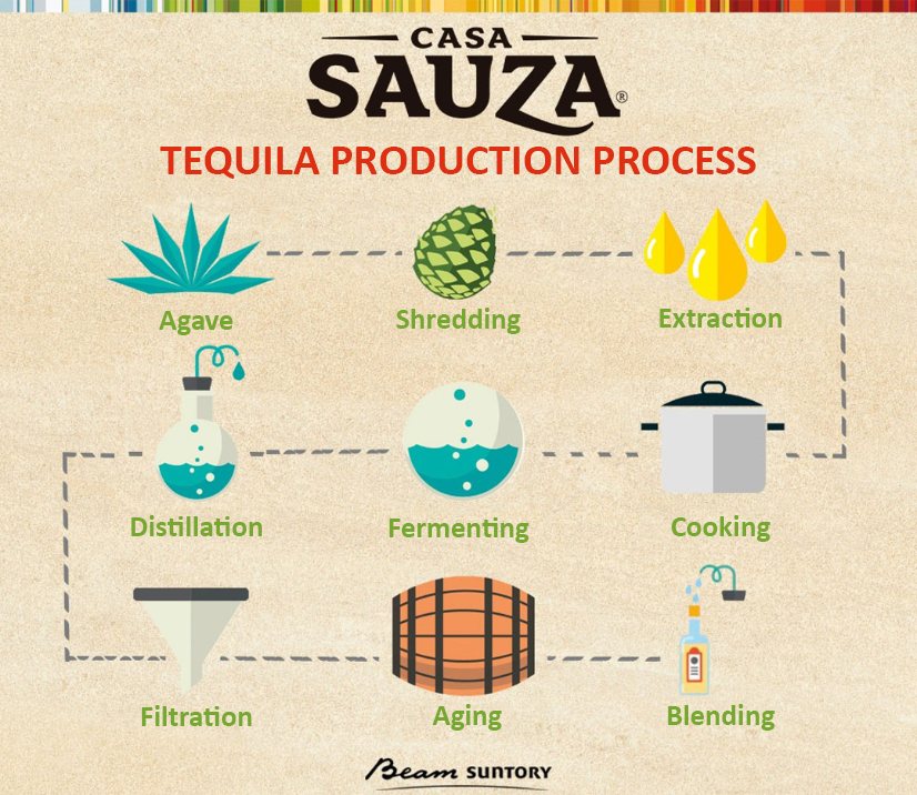 Tequila making process infographic