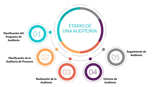 pasos para una auditoria interna