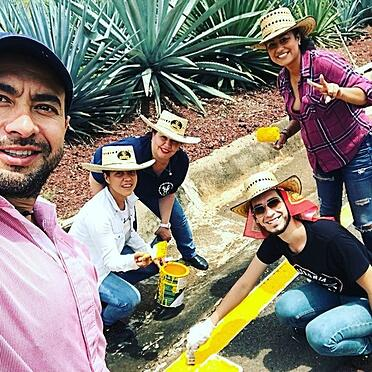 team building campo agave